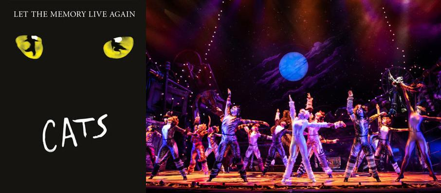 Cats at San Diego Civic Theatre